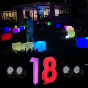 18th birthday party lights