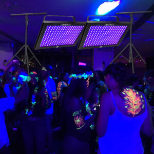 LED UV Black Light Panels